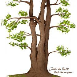Croquis au Jardin des Plantes du Mans - Grand arbre