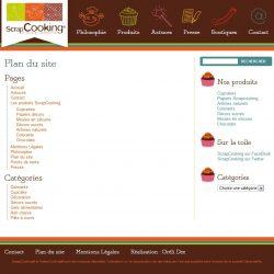 Screenshot template wordpress Plan du site
