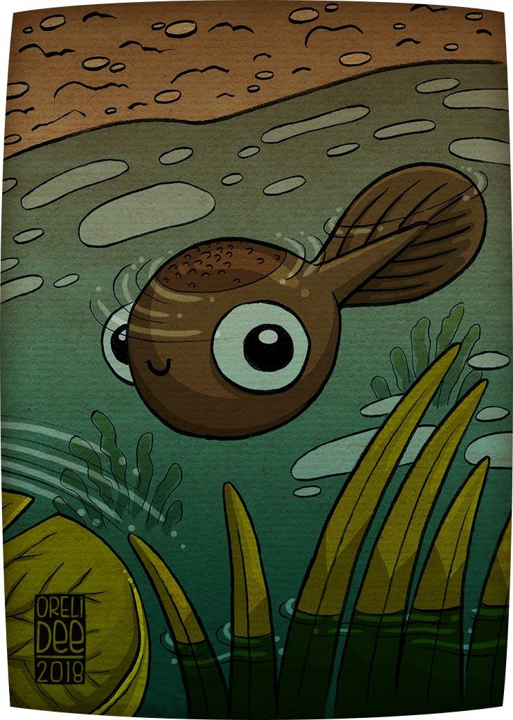 têtard illustration flaque d'eau